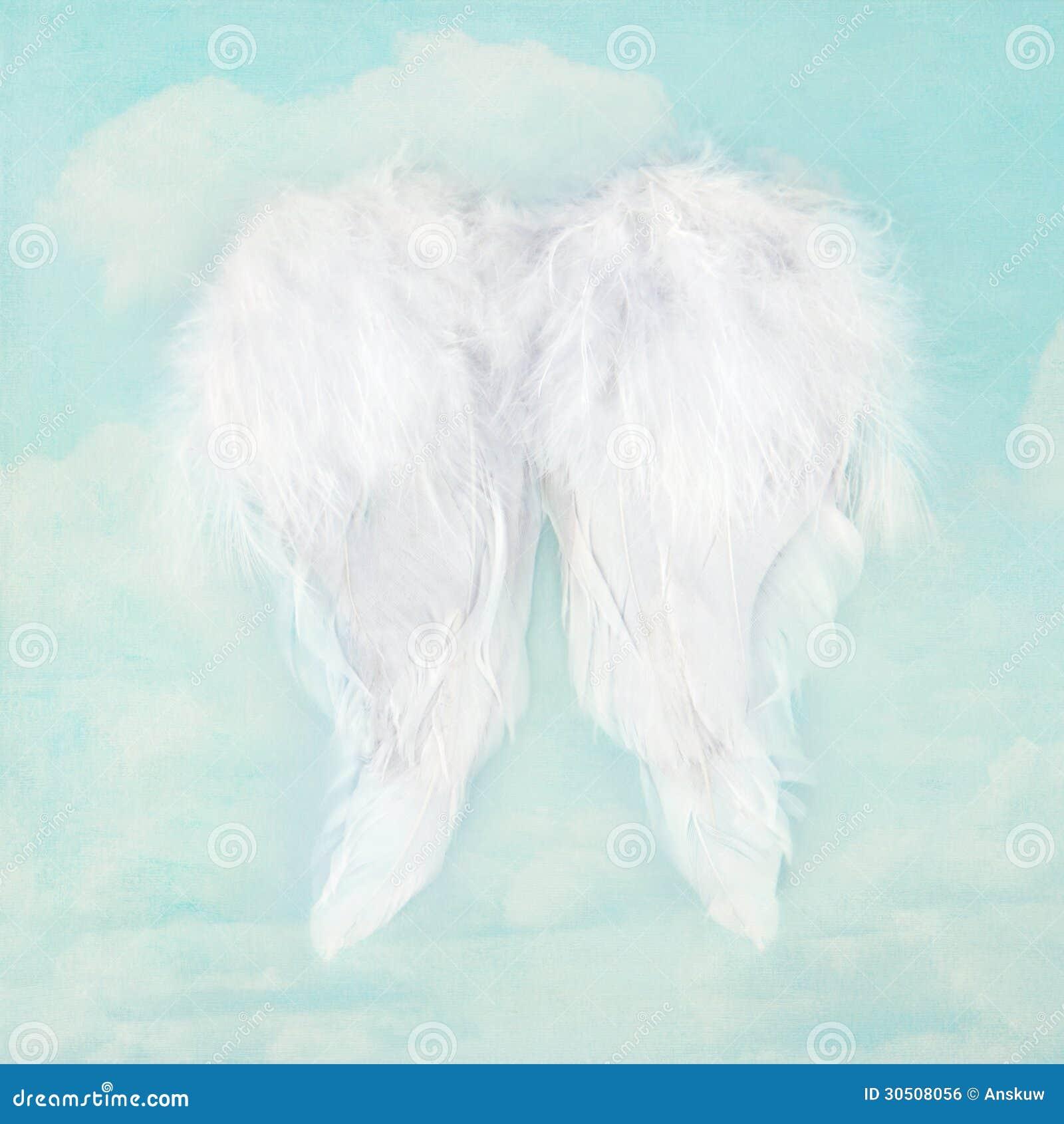Ailes blanches d 39 ange sur le fond texturis de ciel image for Tableau aile d ange