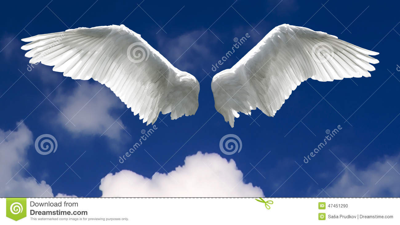 Ailes d 39 ange avec le fond de ciel photo stock image for Tableau aile d ange