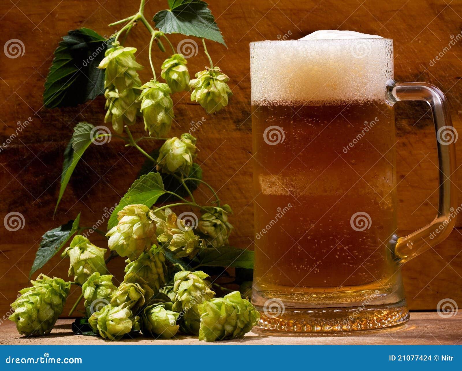 Ainda vida com a caneca de cerveja