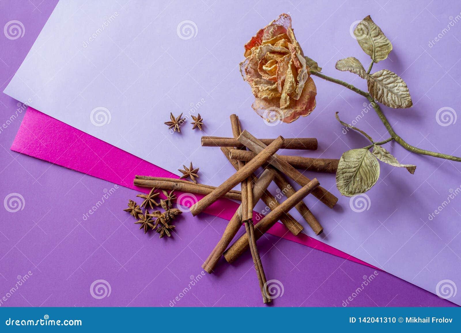 Ainda vida da rosa, de varas de canela artificiais e das estrelas do anis encontrando-se no fundo colorido