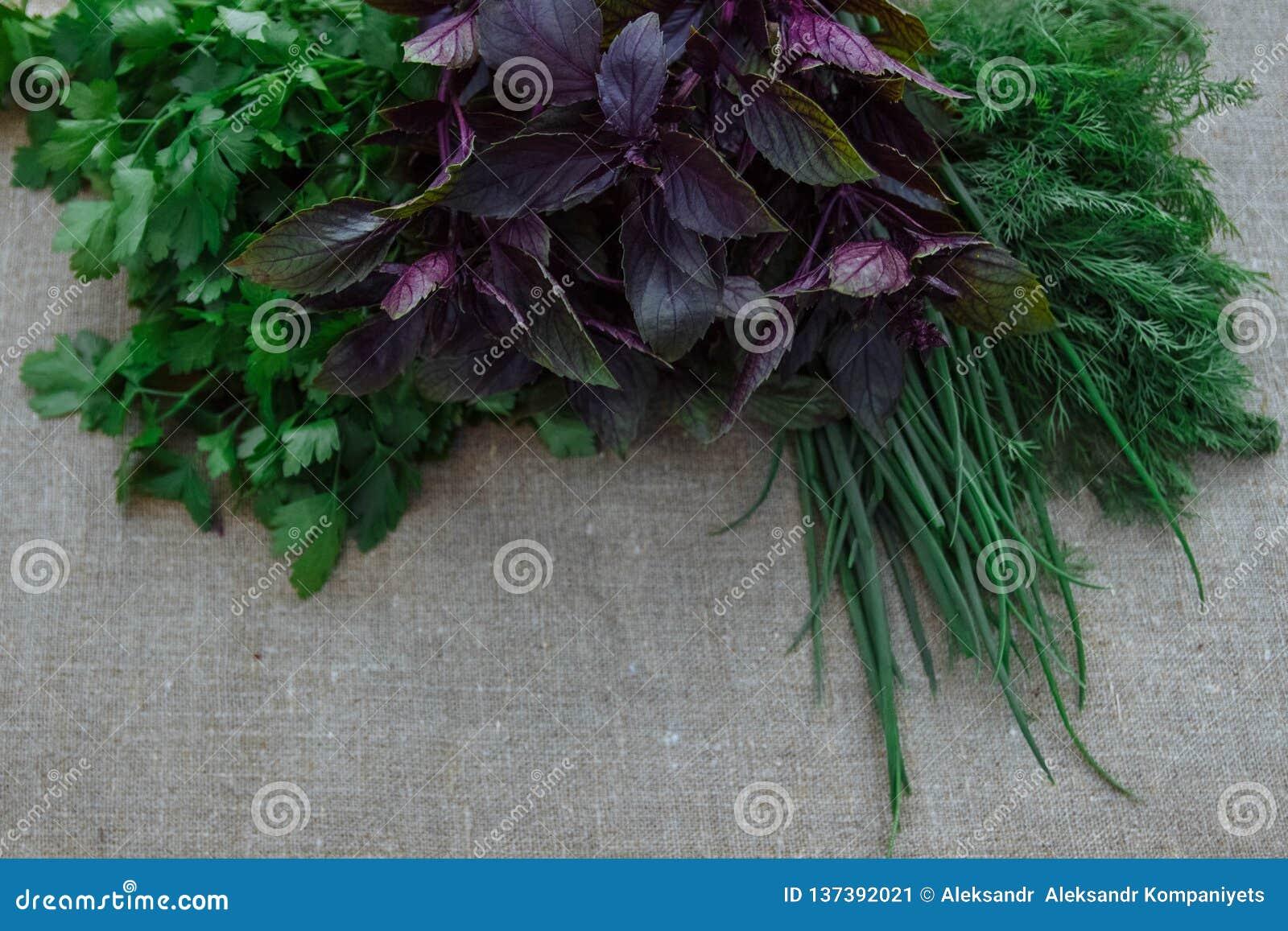 Ainda vida de ervas saudáveis e da mola