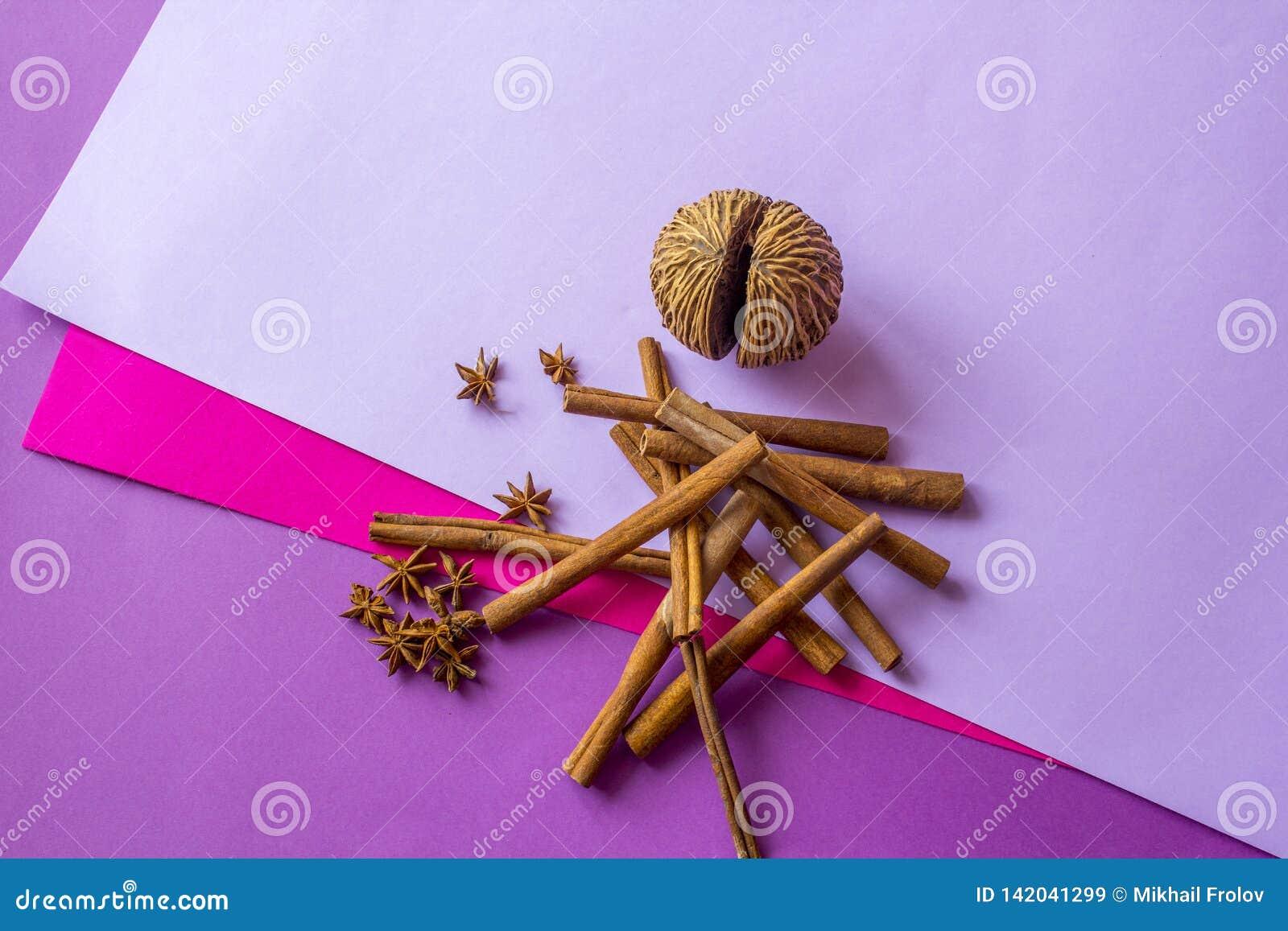 Ainda vida do coco, de varas de canela artificiais e das estrelas do anis encontrando-se no fundo colorido