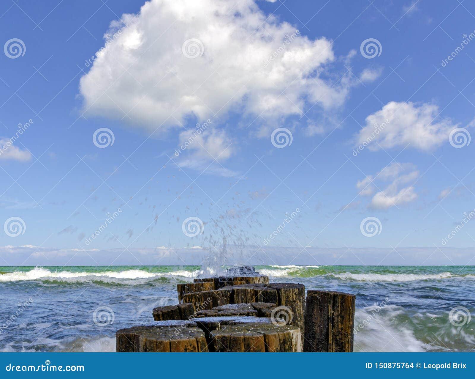Aine en bois et mer onduleuse