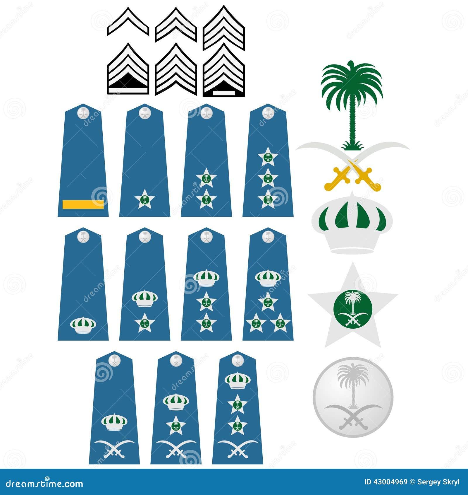 Air Force Insignia Saudi Arabia Stock Vector - Image: 43004969