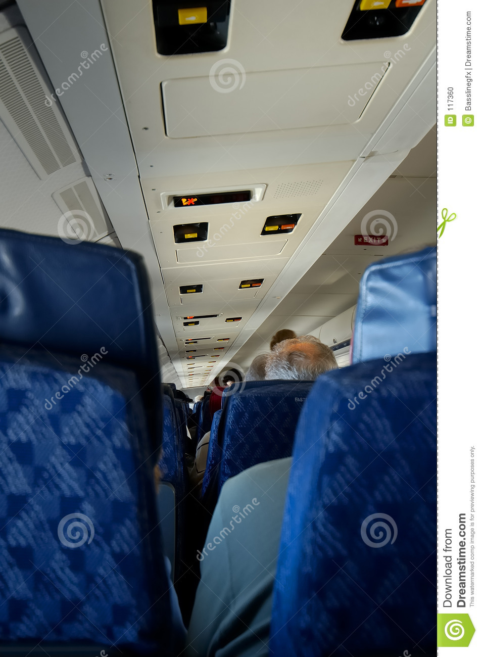 Airplane Passenger View