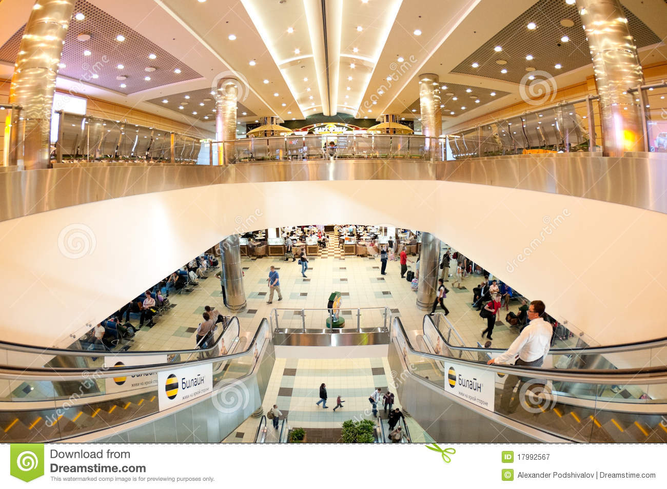 Airport Domodedovo Inside Editorial Photography Image