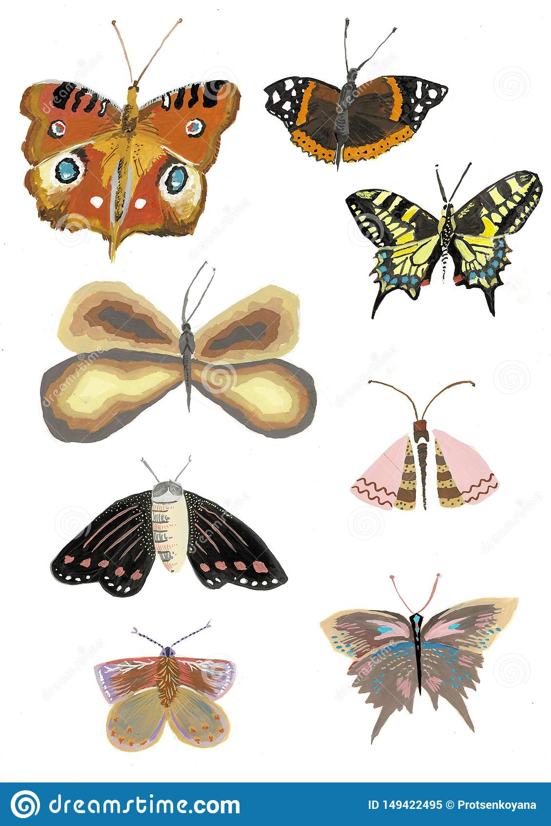 Ajuste das borboletas coloridas real?sticas, ilustra??o da aquarela da borboleta