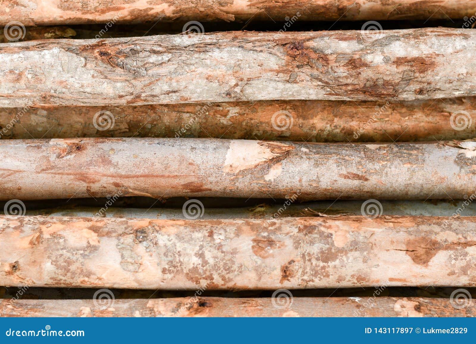 Ajuste das madeiras do log