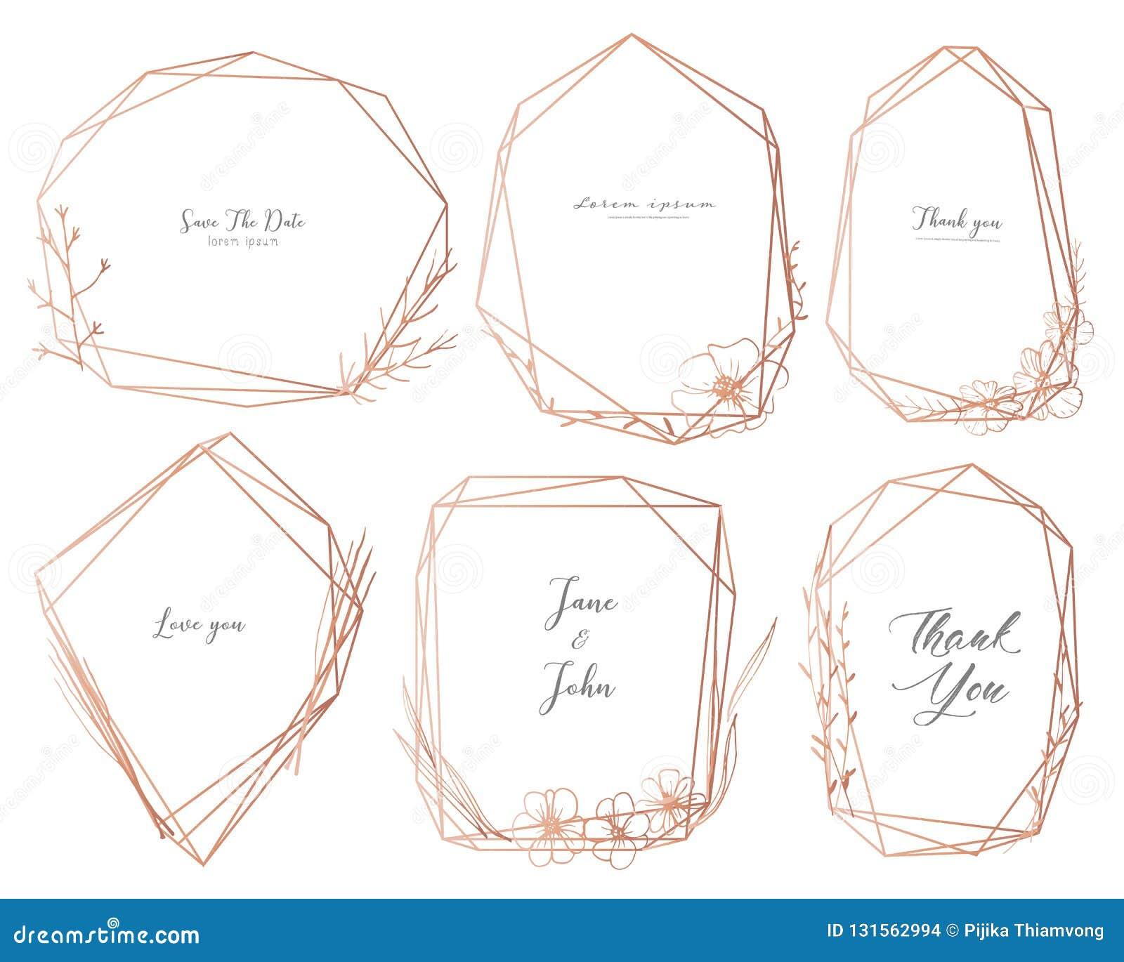 Ajuste do quadro geométrico, flores tiradas mão, composição botânica, elemento decorativo para o cartão de casamento, convites
