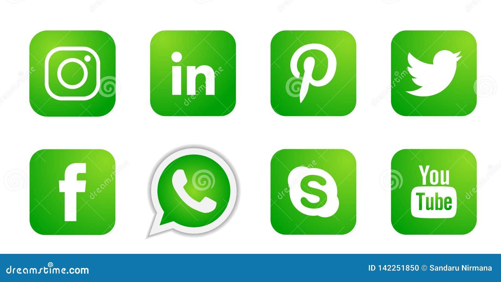 Ajuste dos ícones sociais populares dos logotipos dos meios no vetor verde do elemento de Instagram Facebook Twitter Youtube What