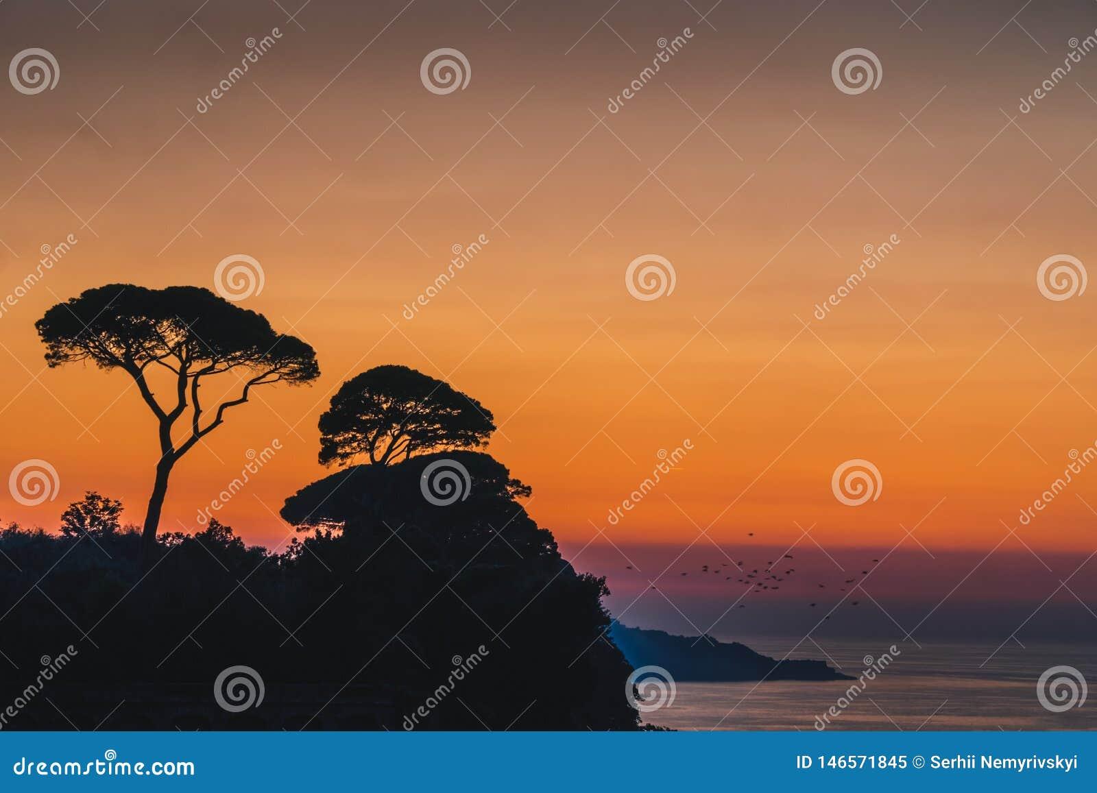 Ajuste hermoso del sol de la puesta del sol detrás de árboles en las colinas de Italia en Sorrento, lugar de la estopa en Italia