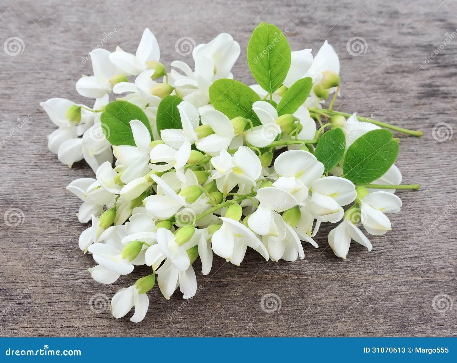 Akacjowi kwiaty