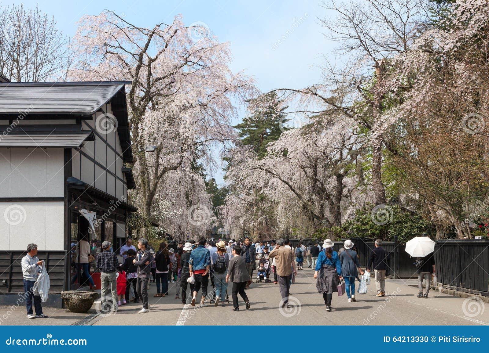 Akita, Japón - abril 27,2014: Sakura en distrito del samurai