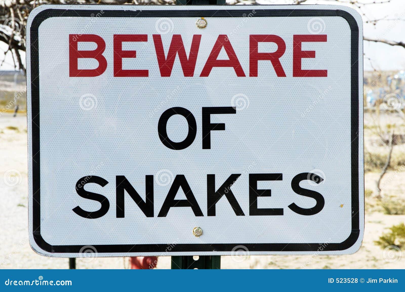 Akta sig ormar
