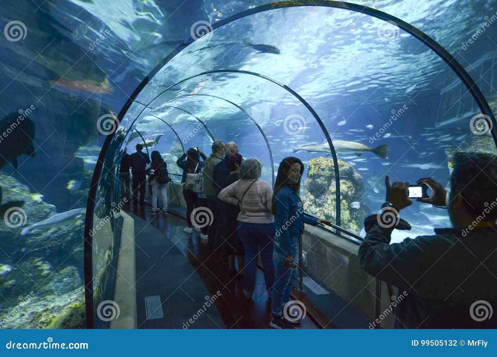 Akvarium de Barcelona, Spanien