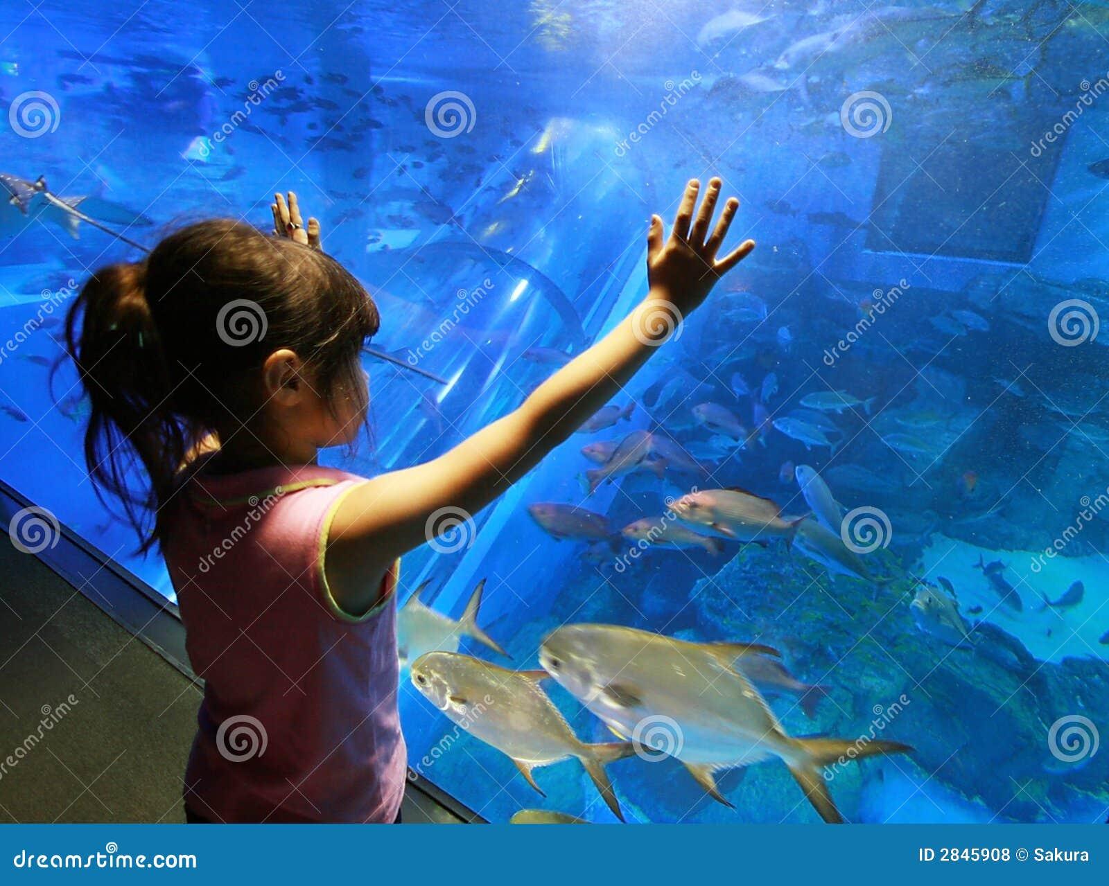 Akvariumbarn