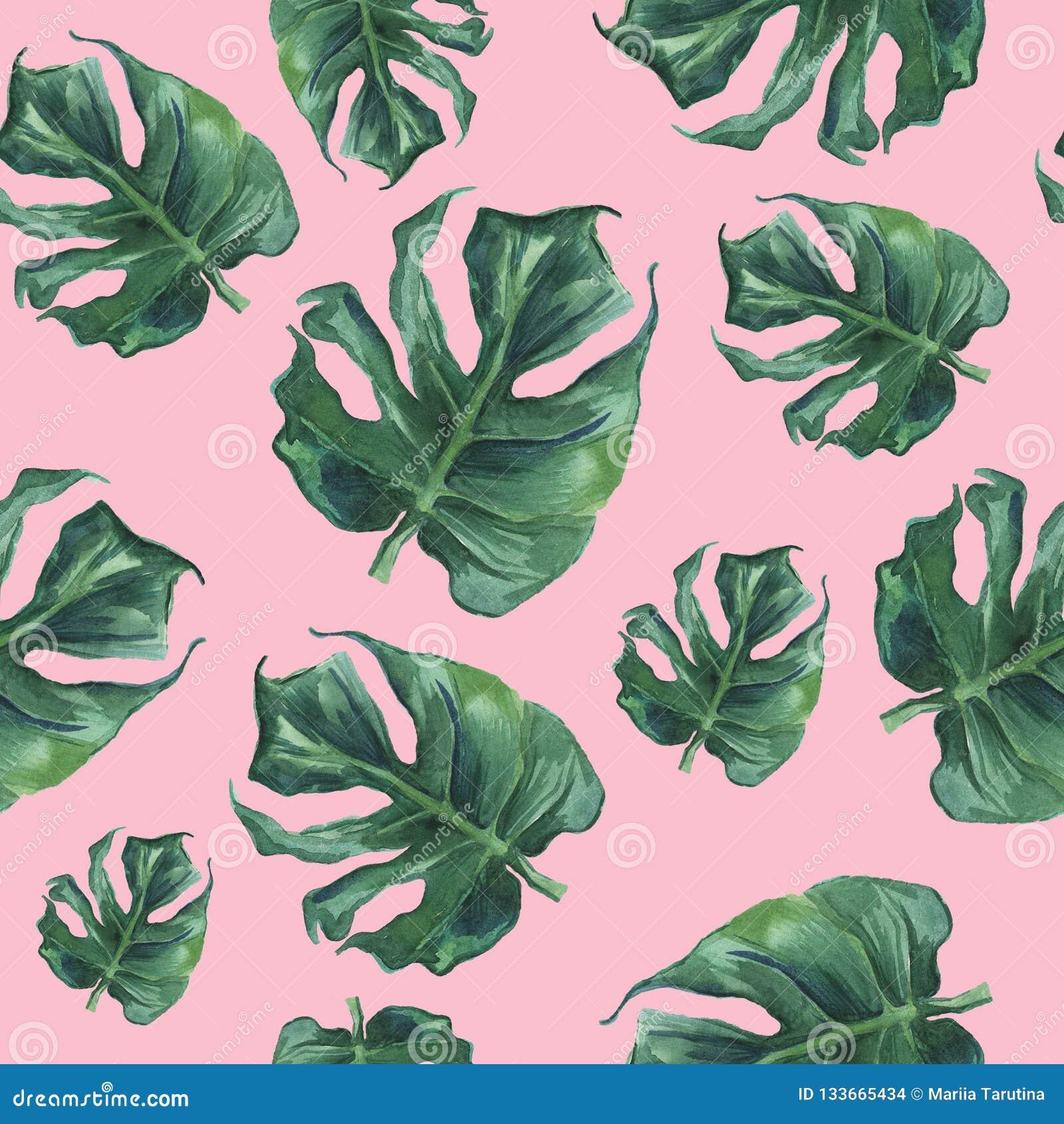 Akwarela bezszwowy wzór z monstera liśćmi