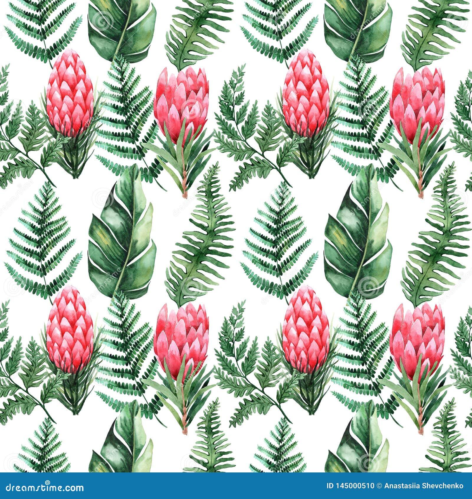 Akwarela bezszwowy wzór z tropikalnymi liśćmi i kwiatami greenfield sukulent projekta elementu kwiecisty ilustraci wektor Doskona