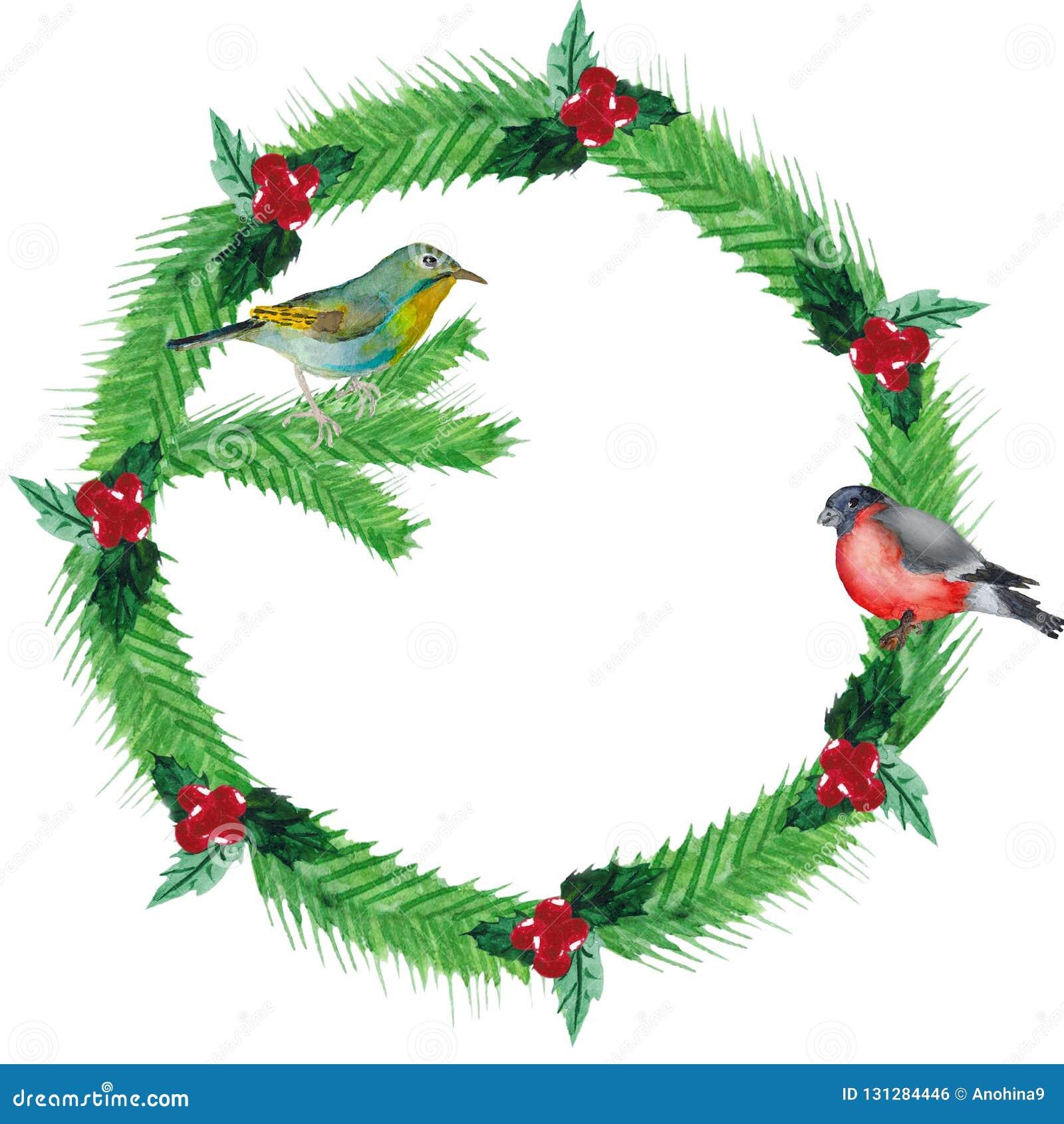 Akwarela Bożenarodzeniowy wianek jedlinowe gałąź, czerwone jagody z ptakami,