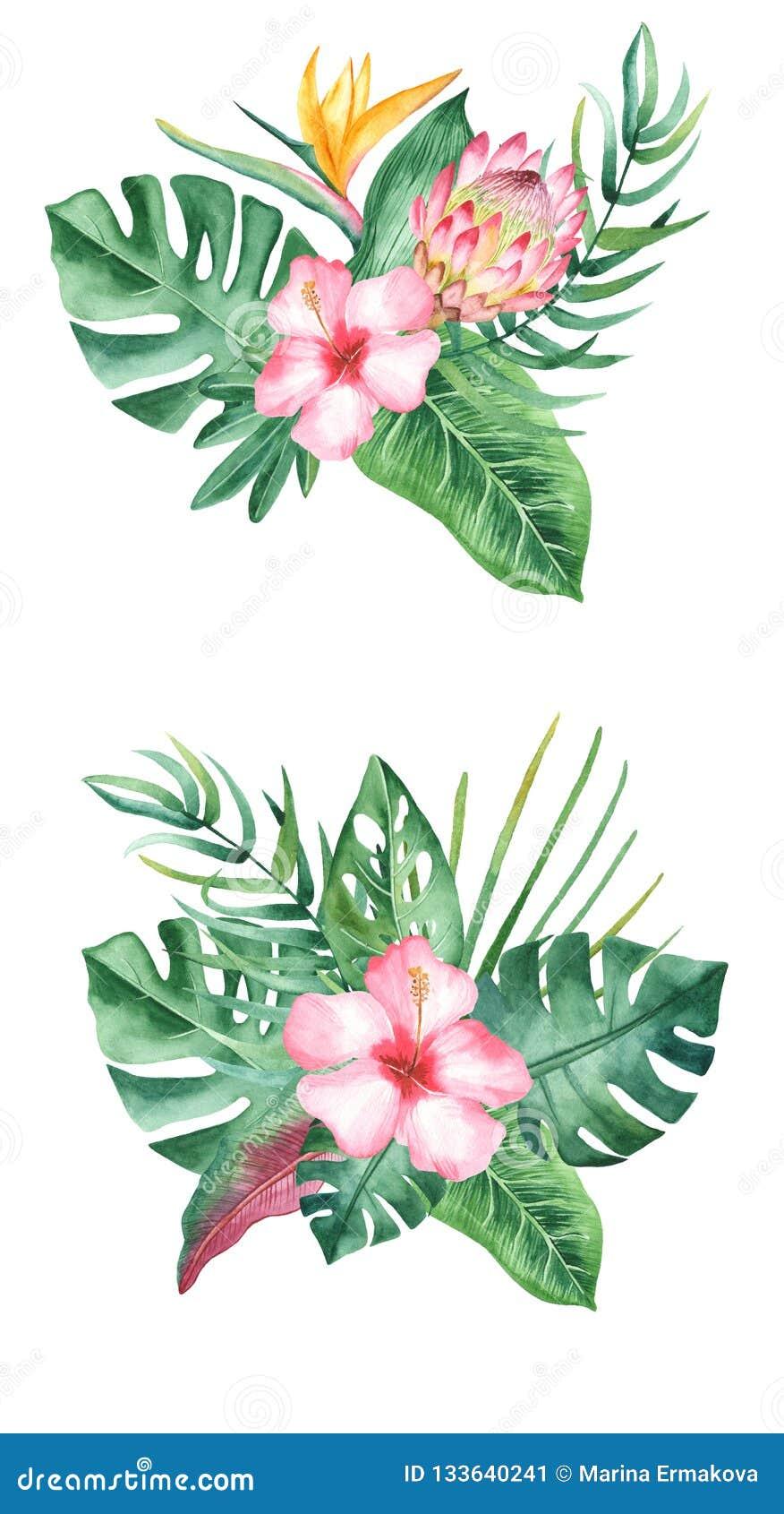 Akwarela bukiet z tropikalnymi liśćmi i kwiatami, akwareli plamy