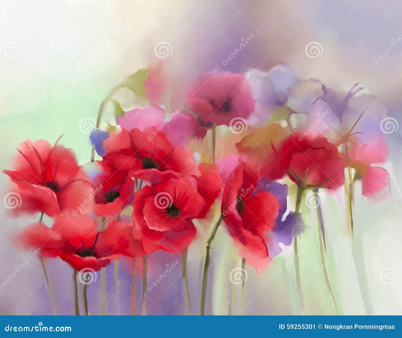 Akwarela czerwony maczek kwitnie obraz