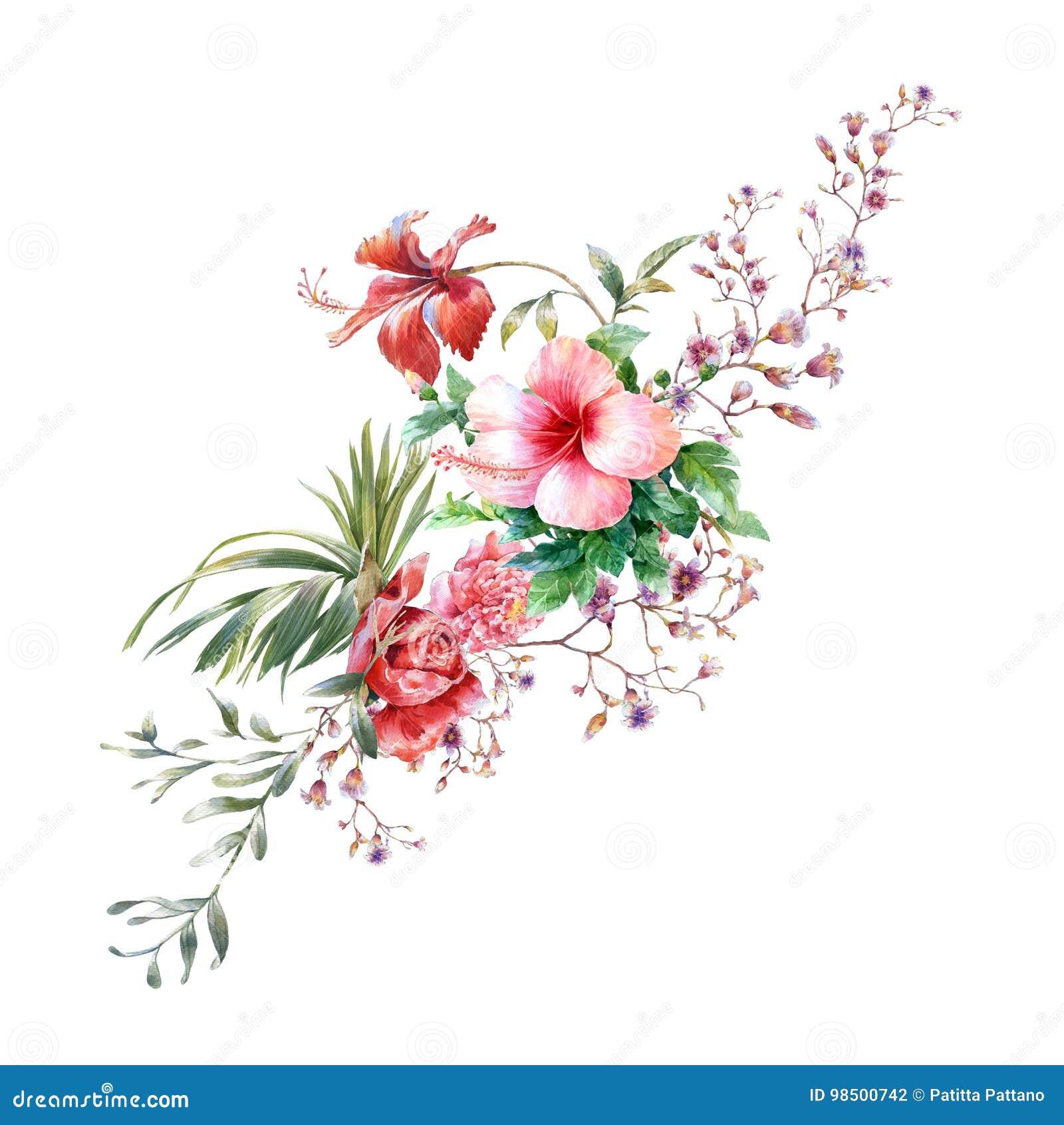 Akwarela obraz liście i kwiat, na białym tle