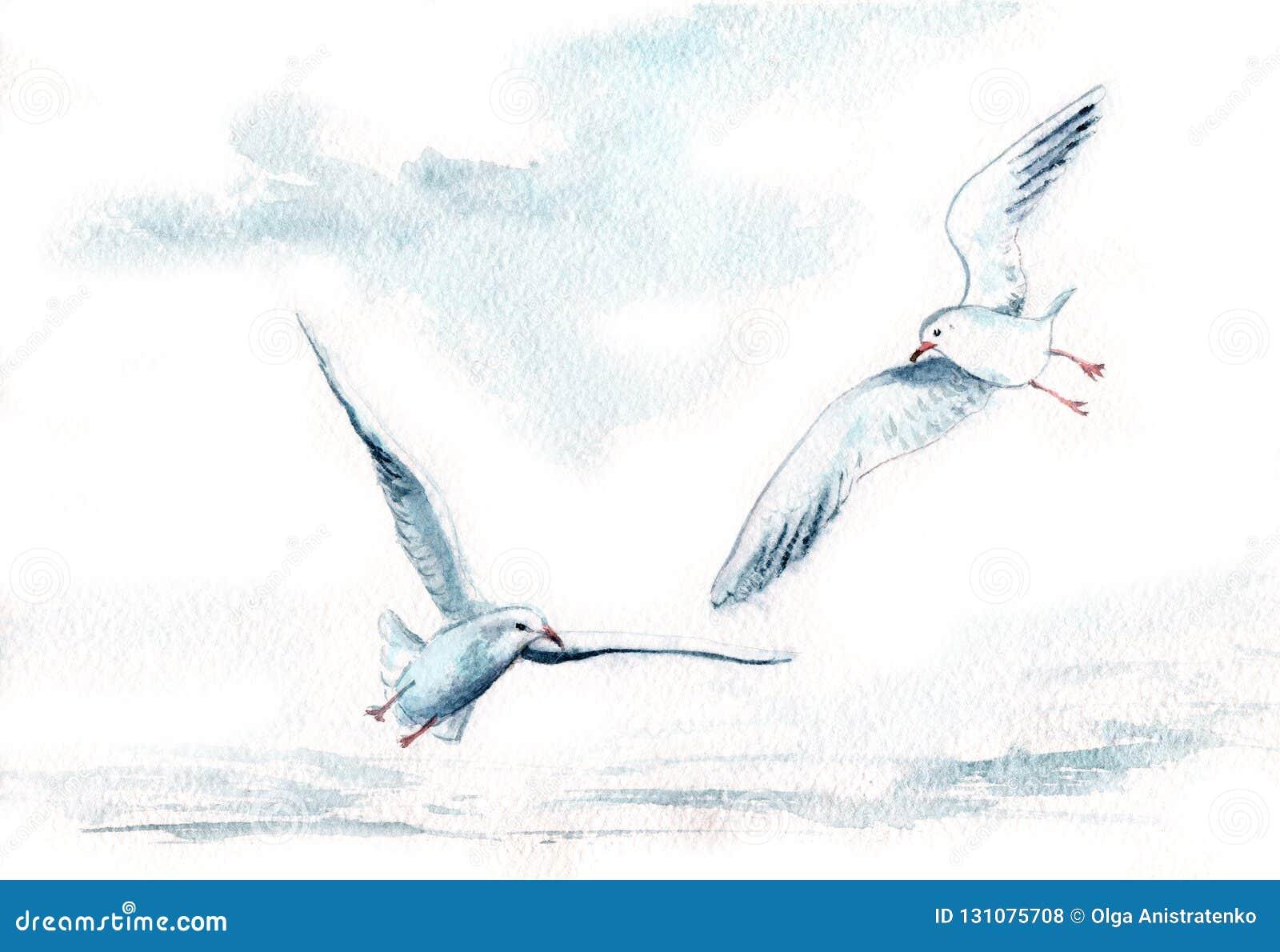Akwarela Rysunek Ptaki Seagulls W Locie Ilustracji Ilustracja