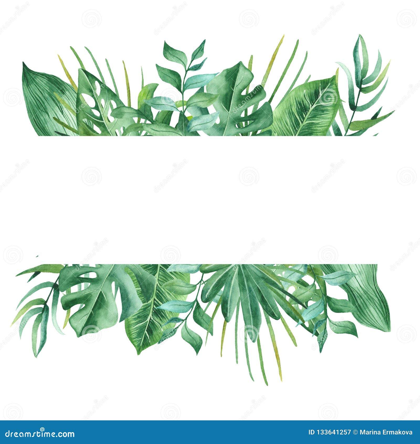 Akwarela sztandar z tropikalnymi liśćmi i kwiatami, akwareli plamy