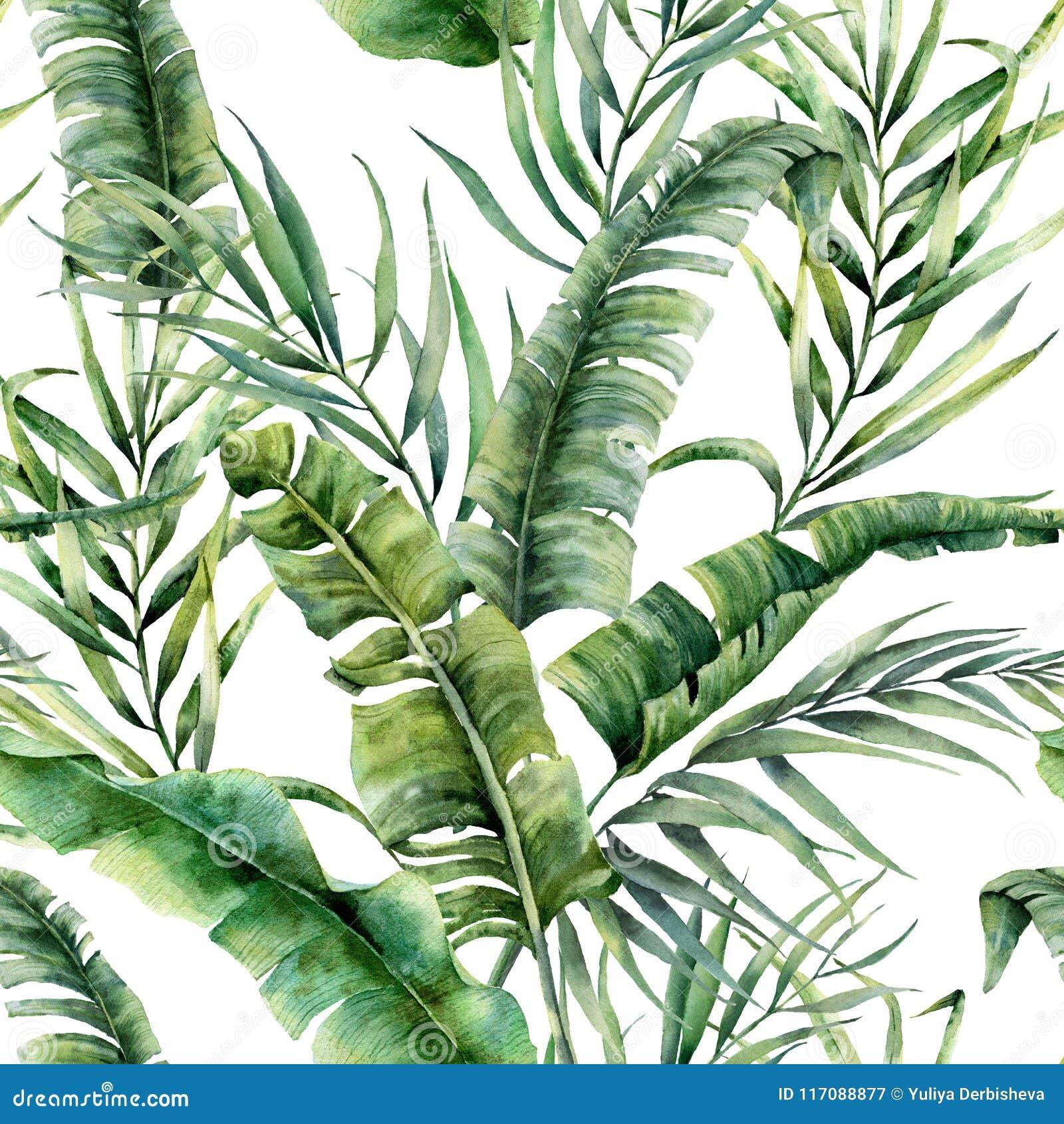 Akwarela tropikalny bezszwowy wzór z kokosowymi i bananowymi palmowymi liśćmi Ręka malująca greenery egzota gałąź na bielu