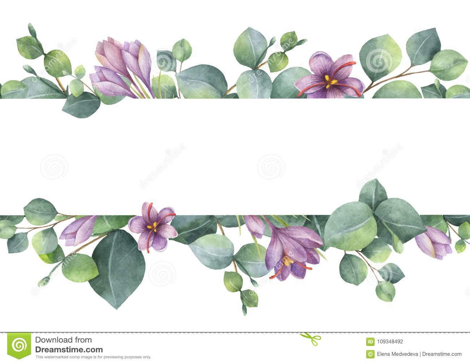 Akwarela wektorowy wianek z zielonym eukaliptusem opuszcza, purpura kwitnie i rozgałęzia się