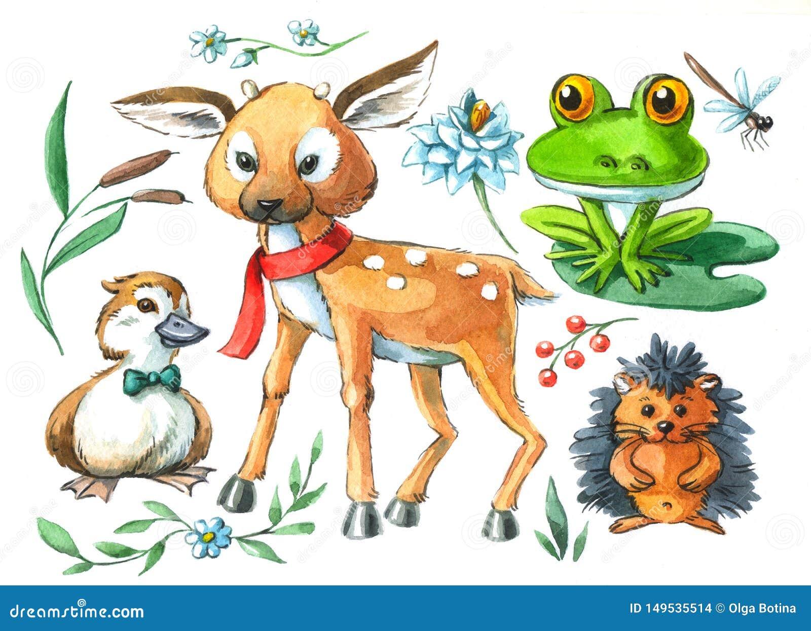 Akwareli ilustracyjni śliczni zwierzęta łaszą się kaczątko żaby jeża