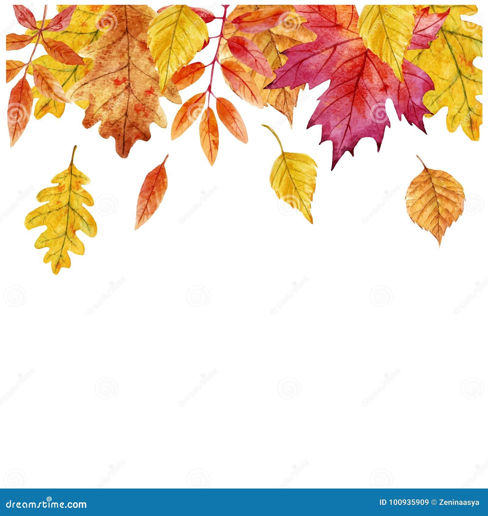 Akwareli jesieni liści wektoru rama