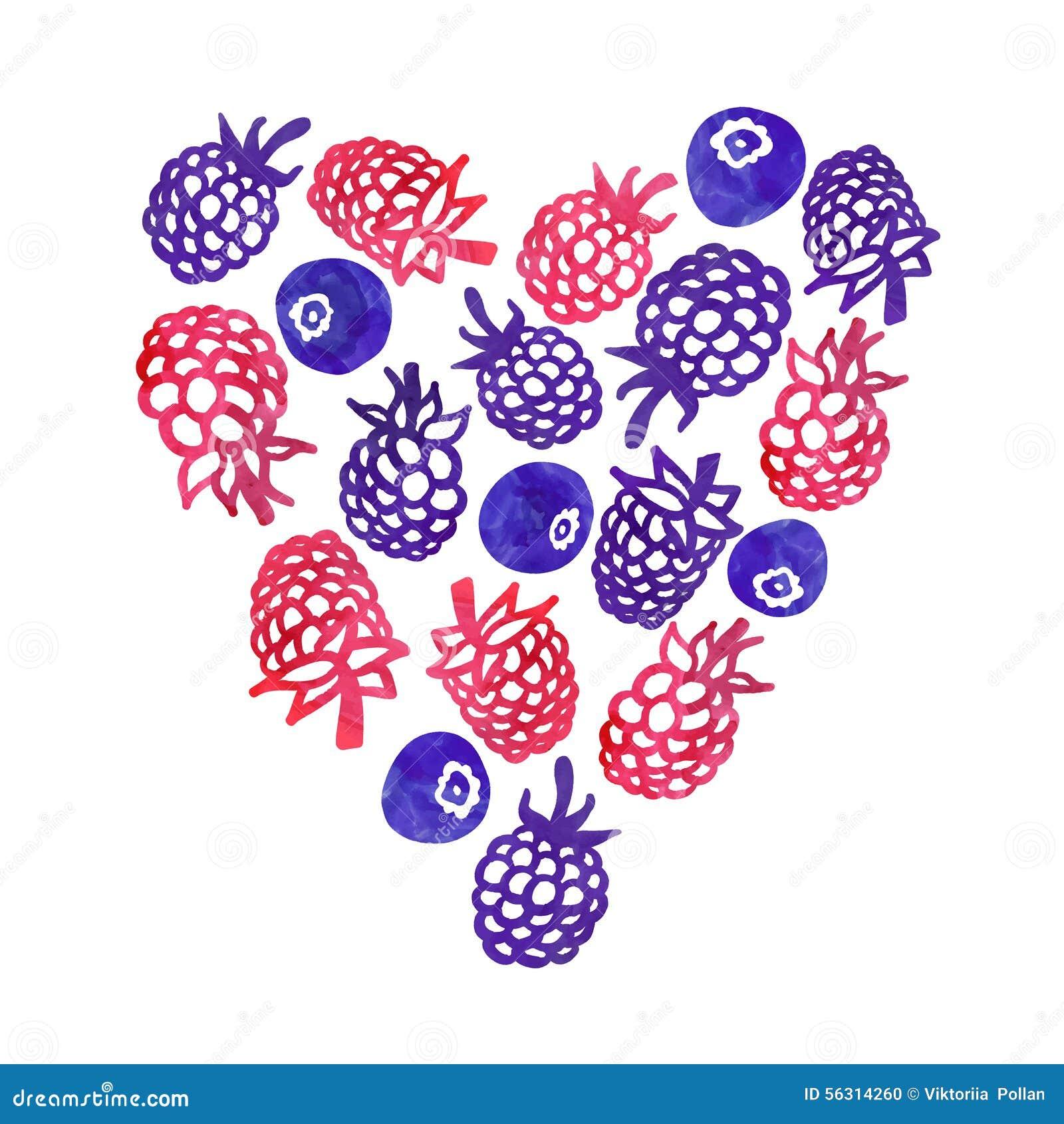 Akwareli natury jagod wektoru serce Doskonalić dla zaproszeń i inny projekt
