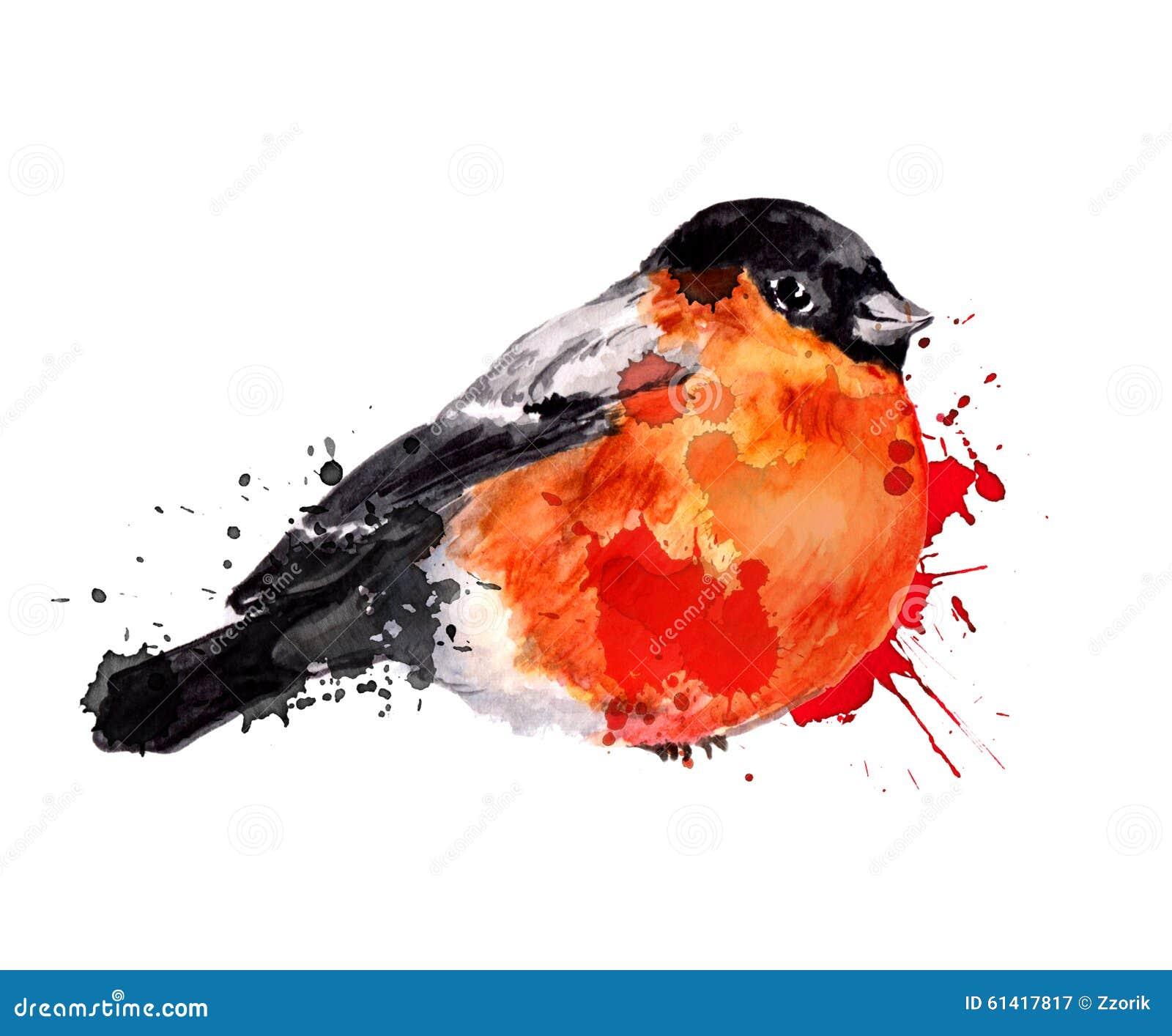 Akwareli Zimy Ptak Gil Ilustracji Ilustracja Złożonej Z Biały