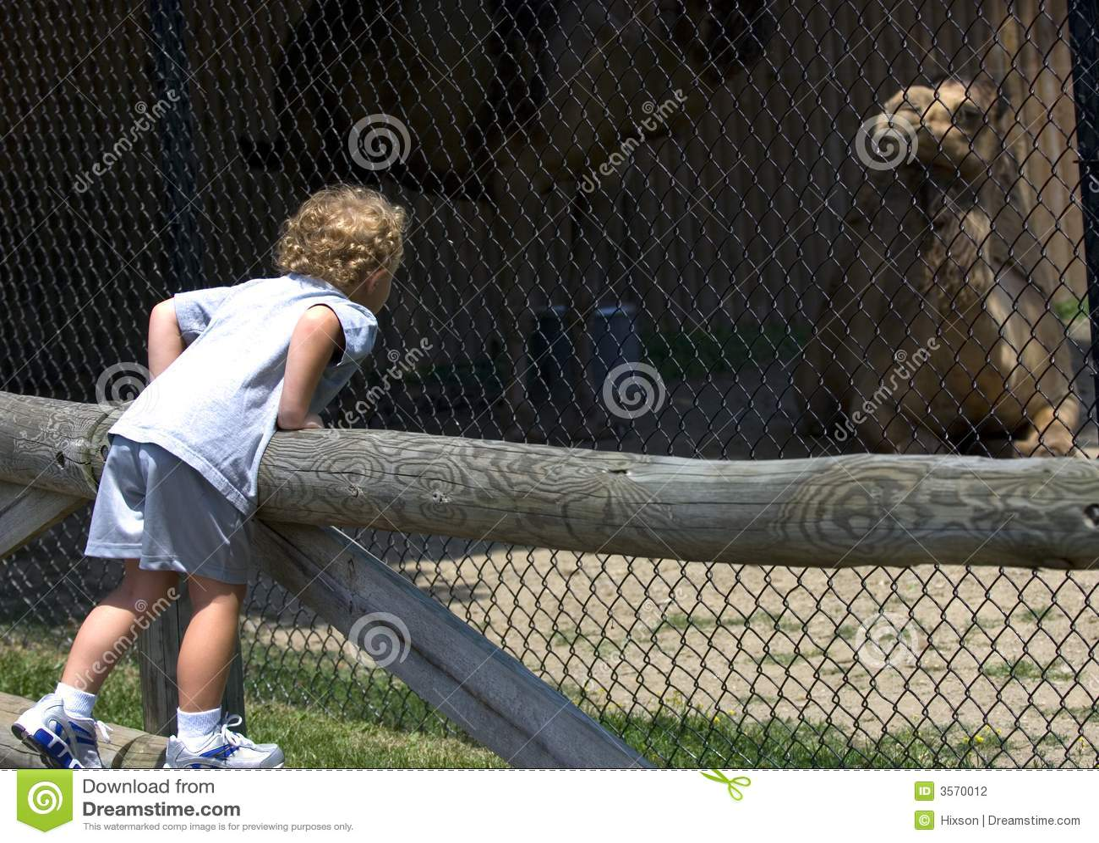 Al giardino zoologico