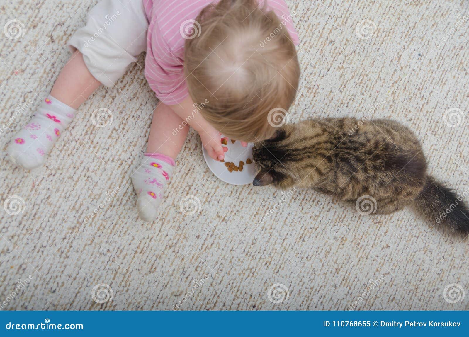 Al lado del gato en el piso sienta a un niño, la muchacha quiere a la tarifa