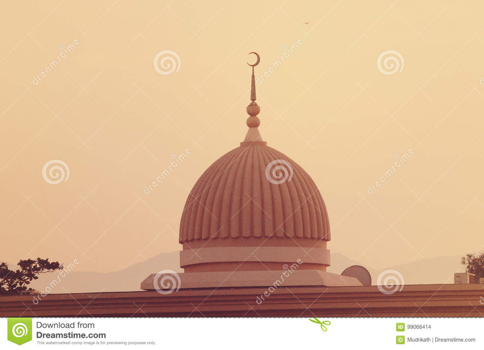 Al Noor Mosque Tomb i Sharjah på natten förenade arabiska emirates