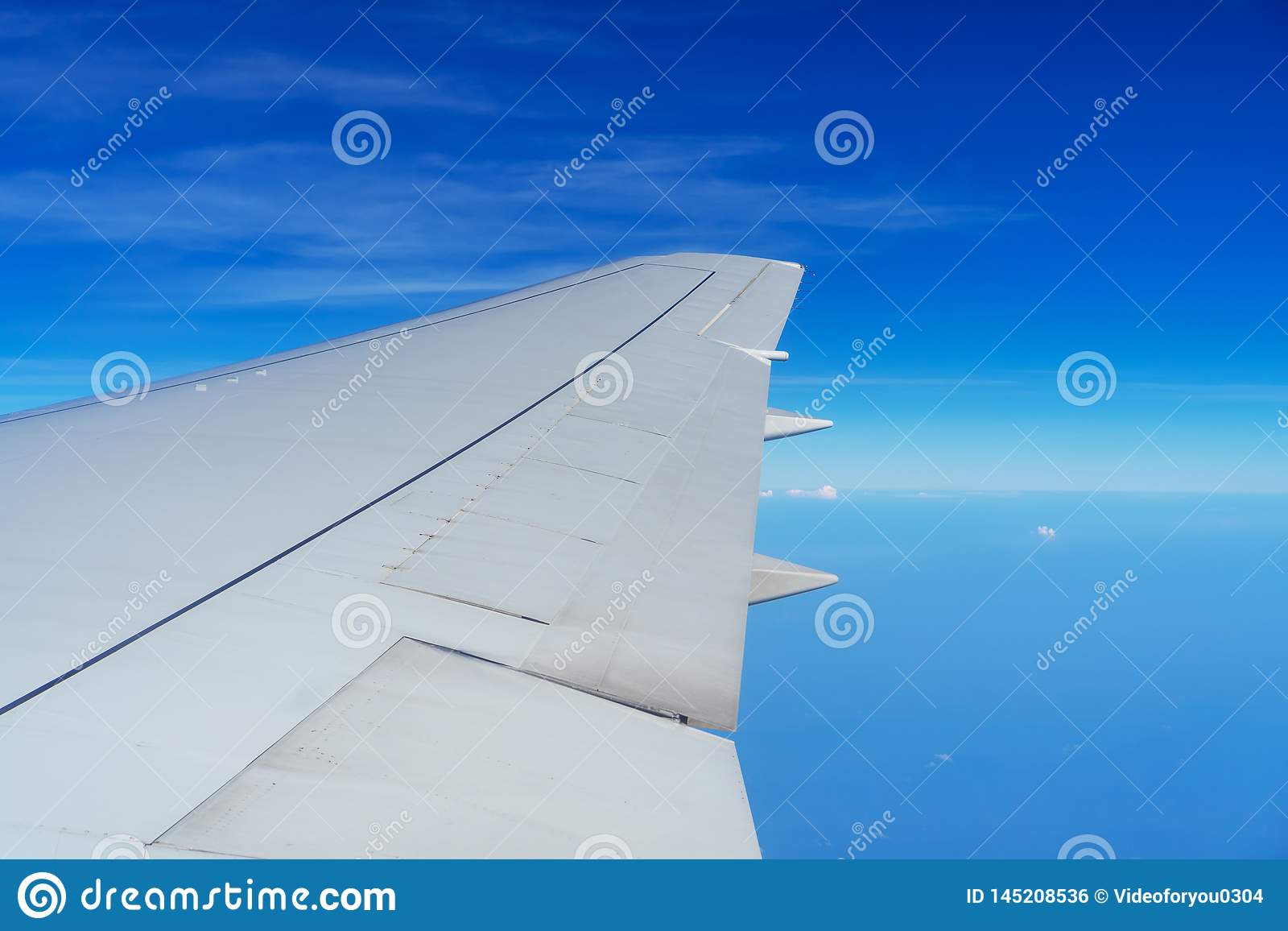 Ala del vuelo del aeroplano