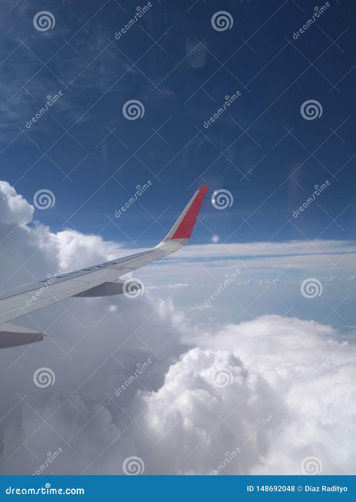 Alas del aeroplano en el cielo