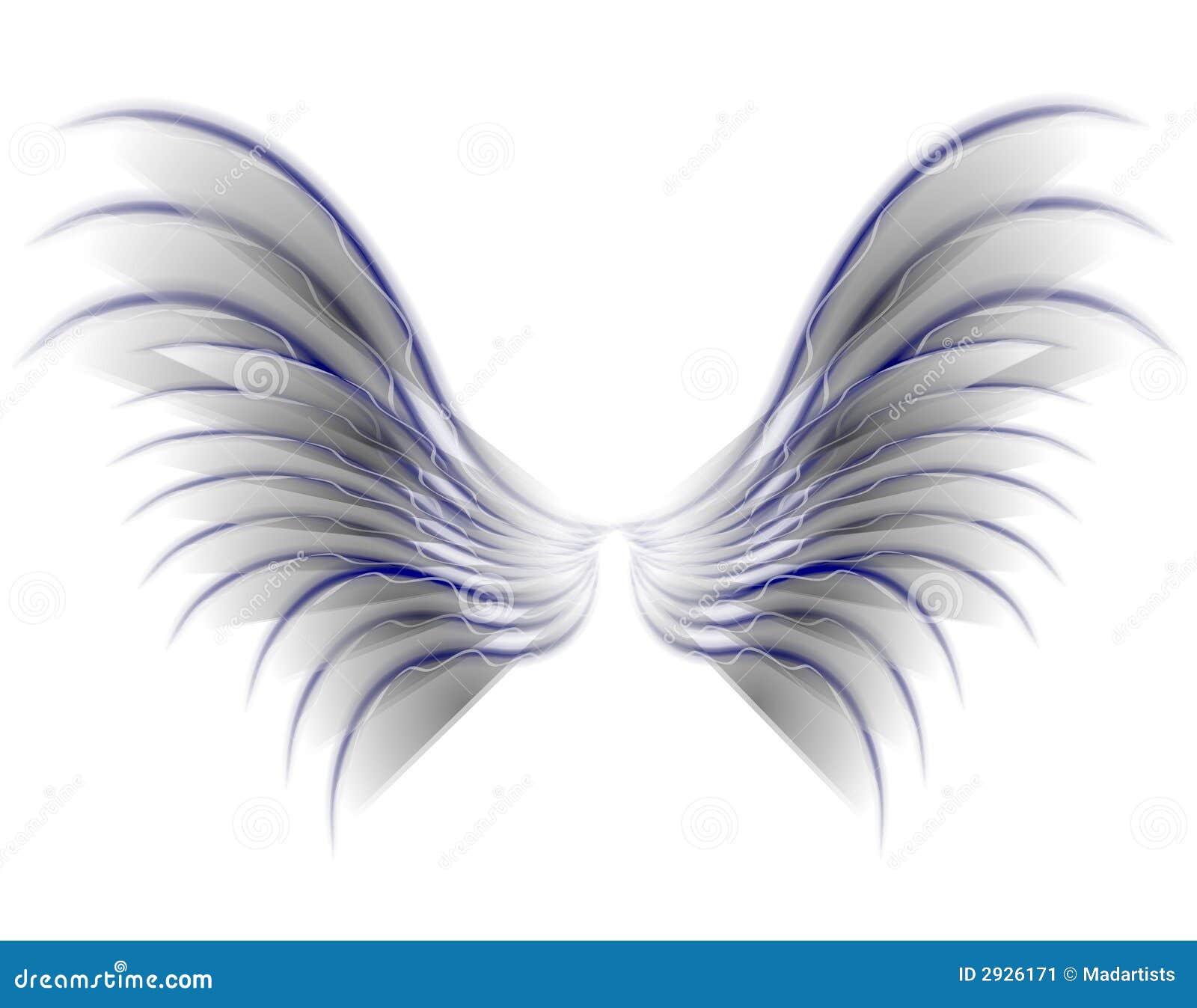 28 Angel Drawings Free Drawings Download: Alas Del Pájaro O De La Hada Del ángel Grises Stock De