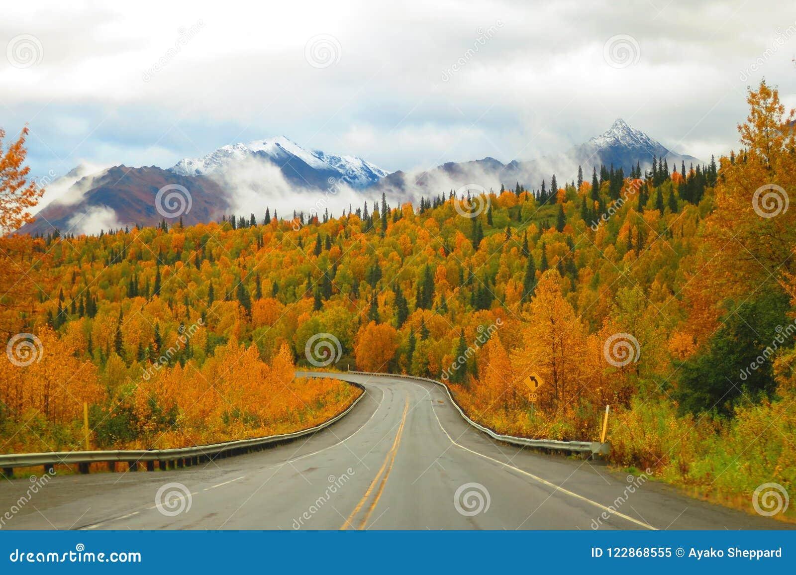 Alaska bergskedja och Autumn Color på parkerar huvudvägen
