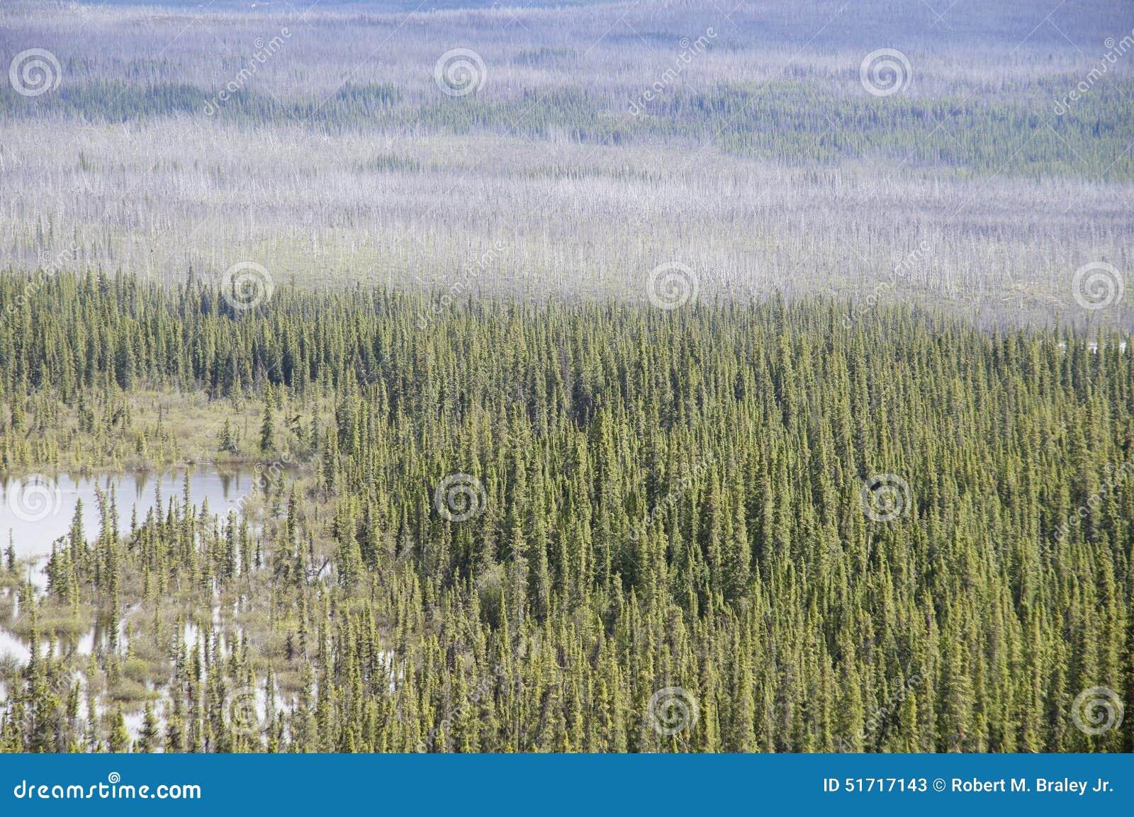 Alaska Highway Peace River