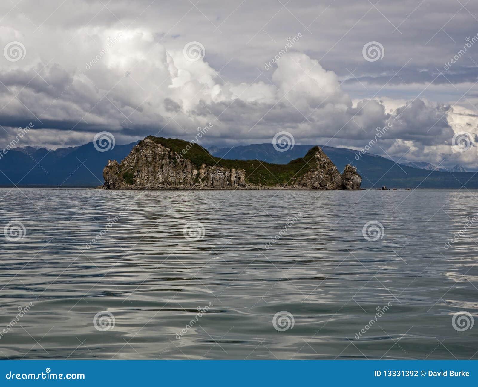 Alaska kaczki wyspa