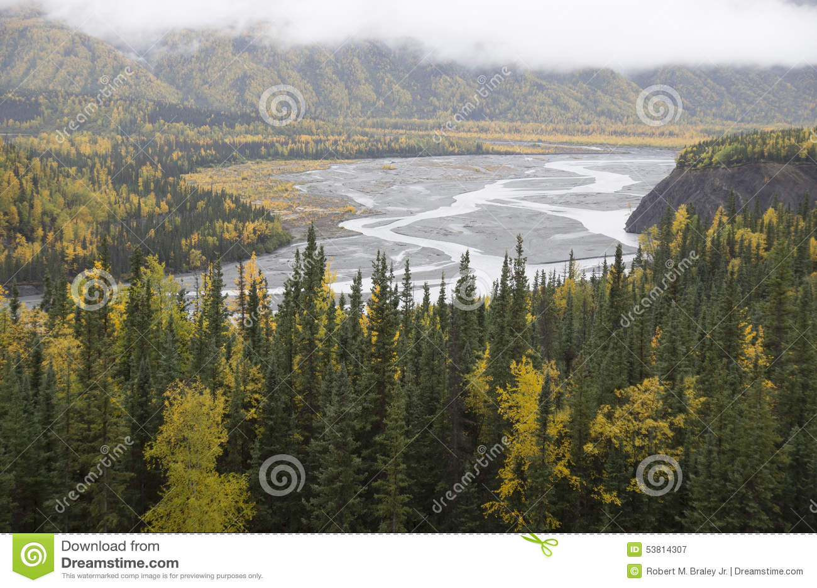 Alaska Matanuska Valley River Fall Trees
