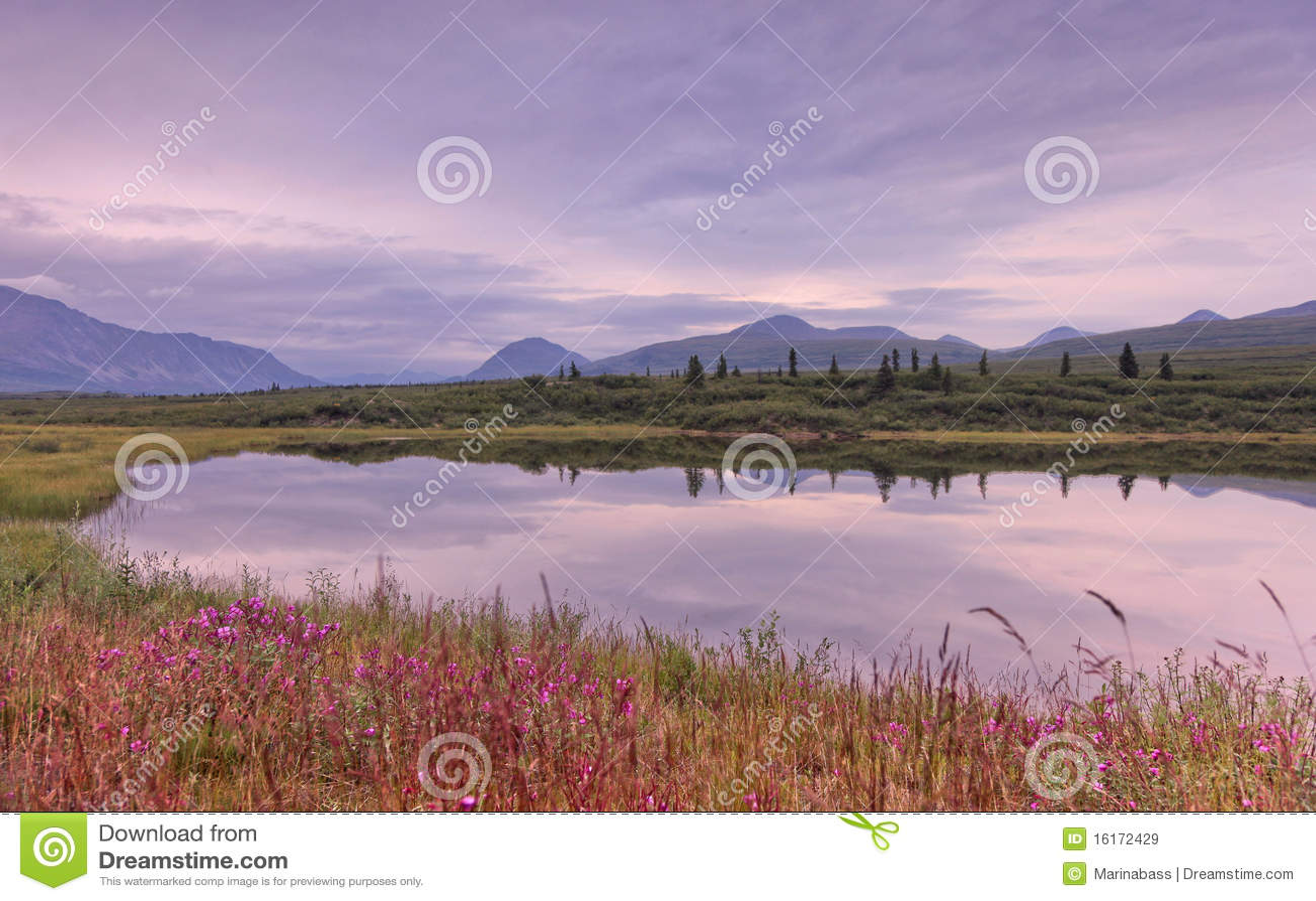 Alaska: Mountan Lake Reflection