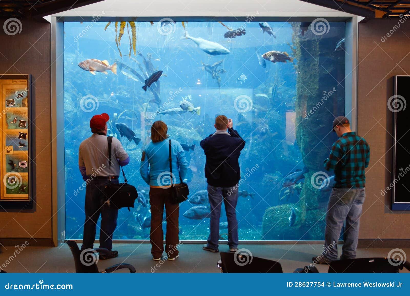 Alaska - People Visiting Sea Life Center