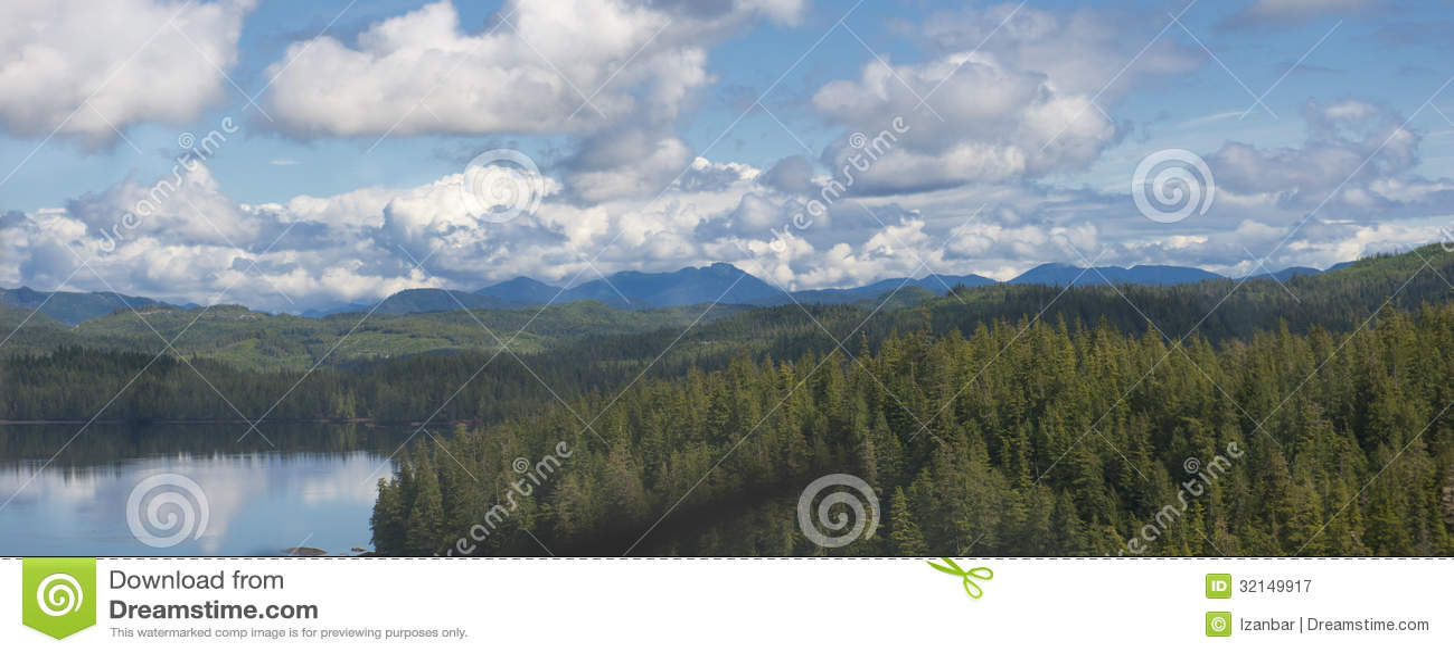 Alaska-Prinz der Wales-Inselvogelperspektive