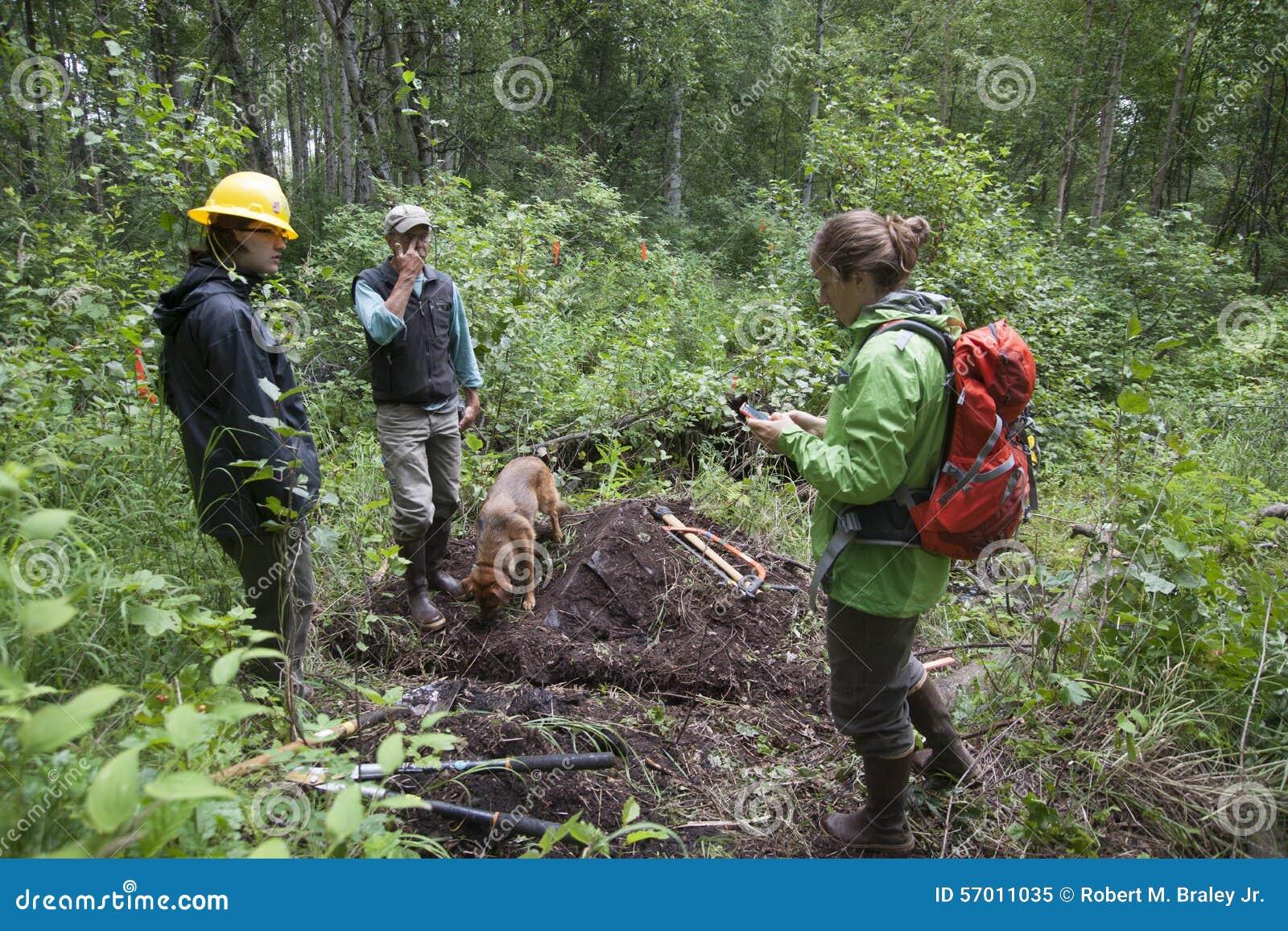 Alaska Wilderness Trail Construction
