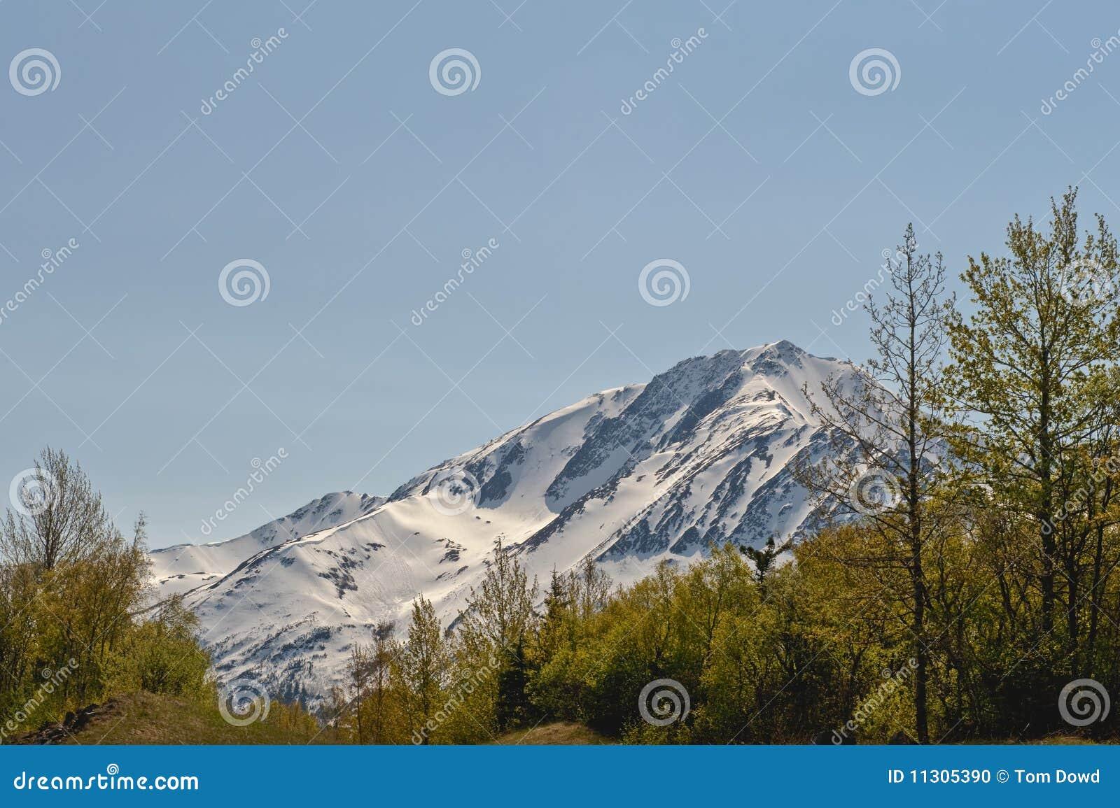 Alaskischer Berg