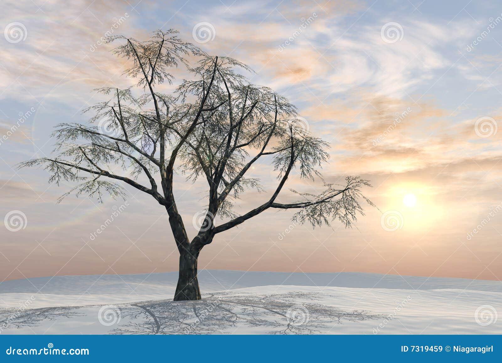 Alba del pastello dell albero di inverno